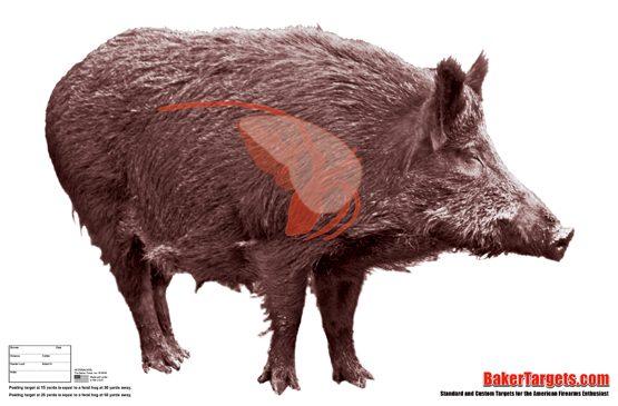 feral hog half size target