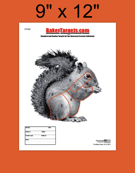 squirrel 1 target