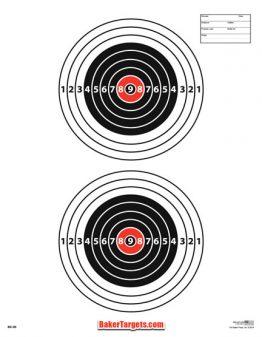 two bulls eyes target